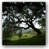 Geocaching Frontera Natural  Fuente la Vide