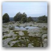 Geocaching Frontera Natural · Peña el Águila
